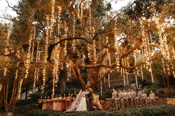 wedding planner in delhi ncr